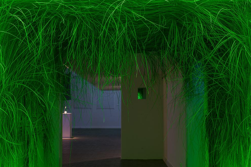 """Emilia Maryniak, """"ZA-PLO-TKA"""", trawa, drut, siatka, zielone światło, 2014"""