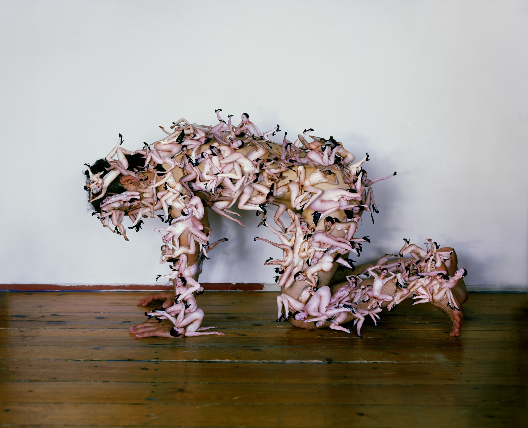 Aneta Grzeszykowska iJan Smaga, Beztytułu (Pies), 2008, dzięki uprzejmości artystów