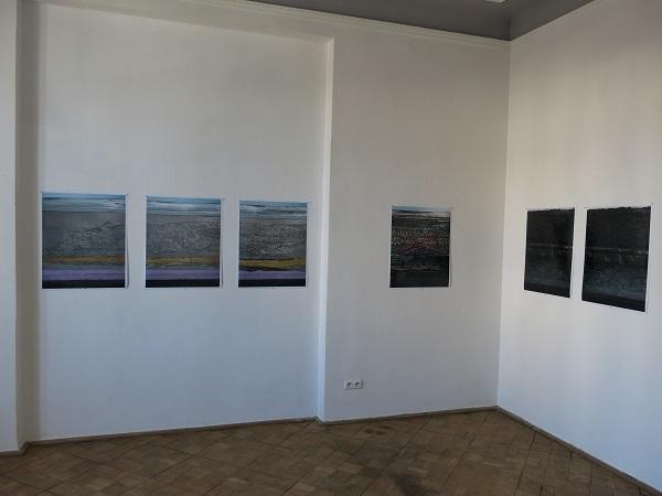 Vivisection, Hanna Ljungh, 2014