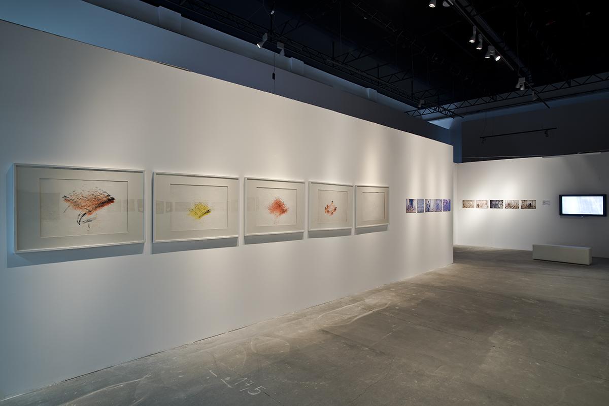 Dokumentacja projektu MEART – SEMI-LIVING ARTIST, od2002, Guy Ben-Ary