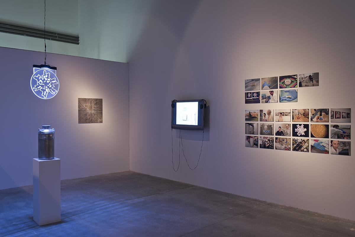 SNOWFLAKE / ŚNIEŻYNKA (2015) Boryana Rossa, Guy Ben-Ary iOleg Mavromatti