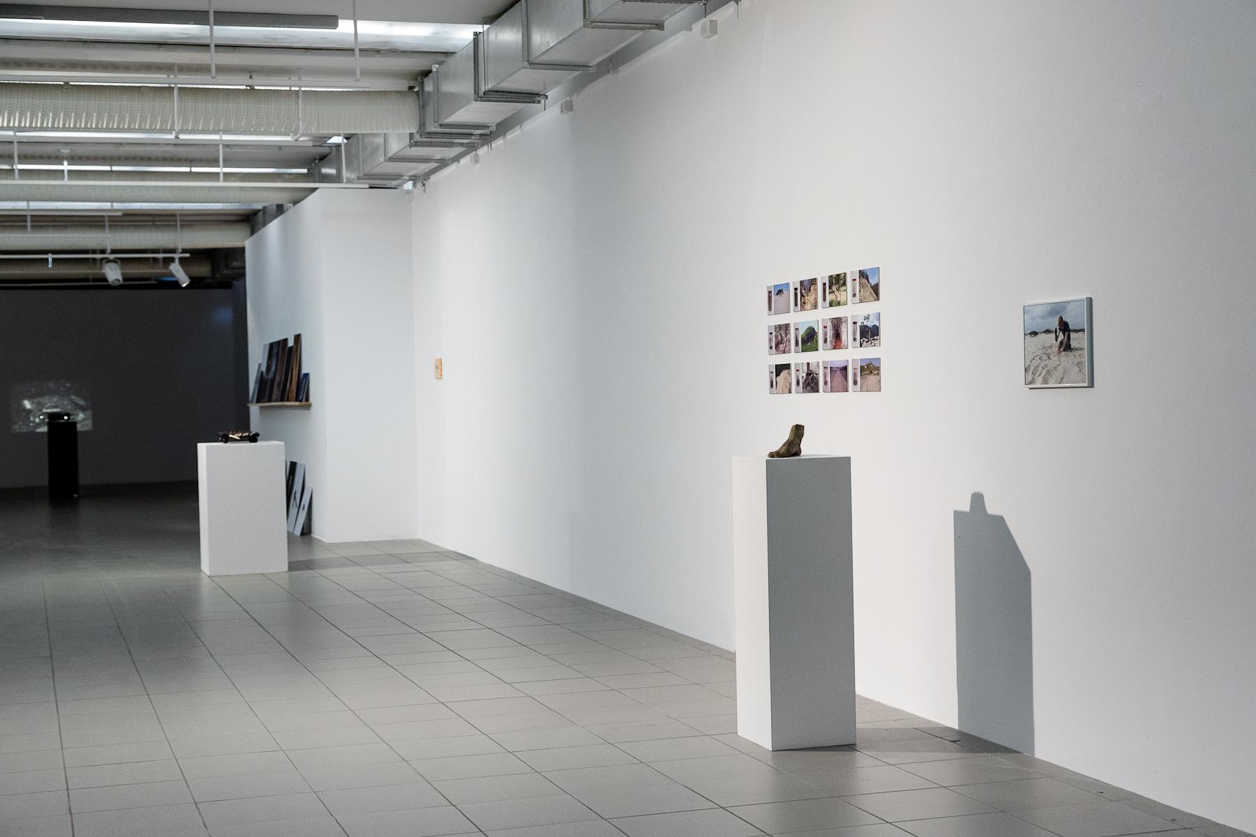 Galeria Sztuki Współczesnej BWA wKatowicach,   widok wystawy Mocne stąpanie poziemi, projekt Rezerwat