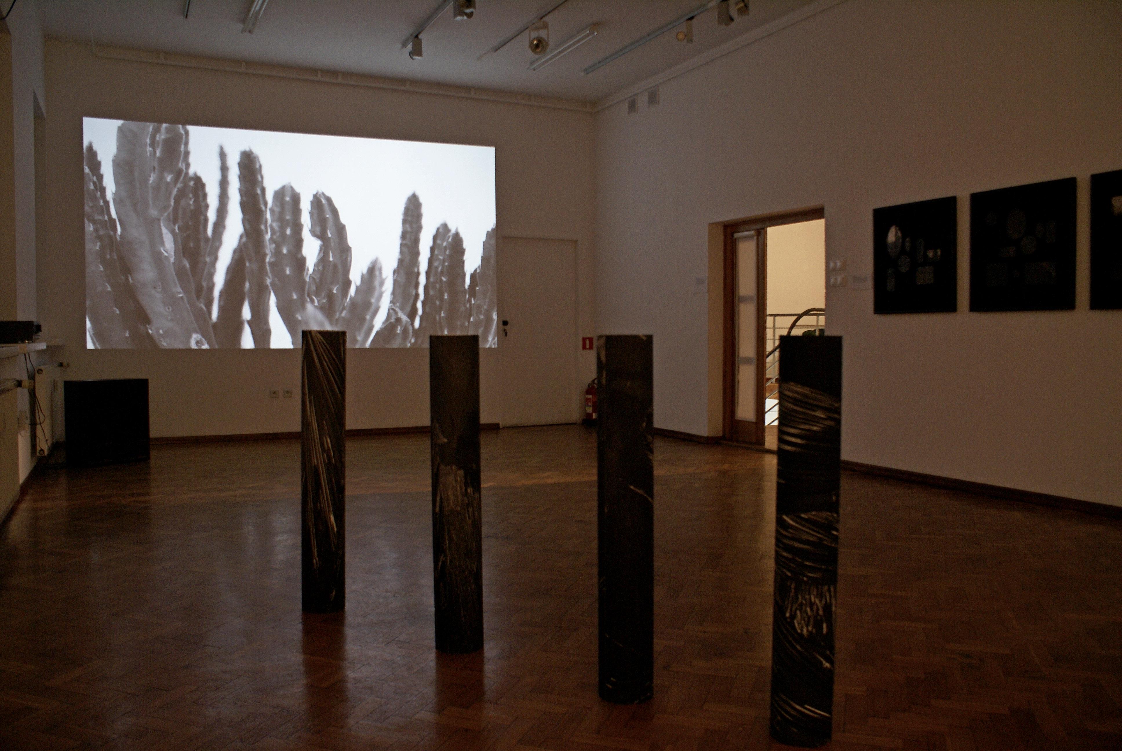 Milczenie dźwięków, widok wystawy