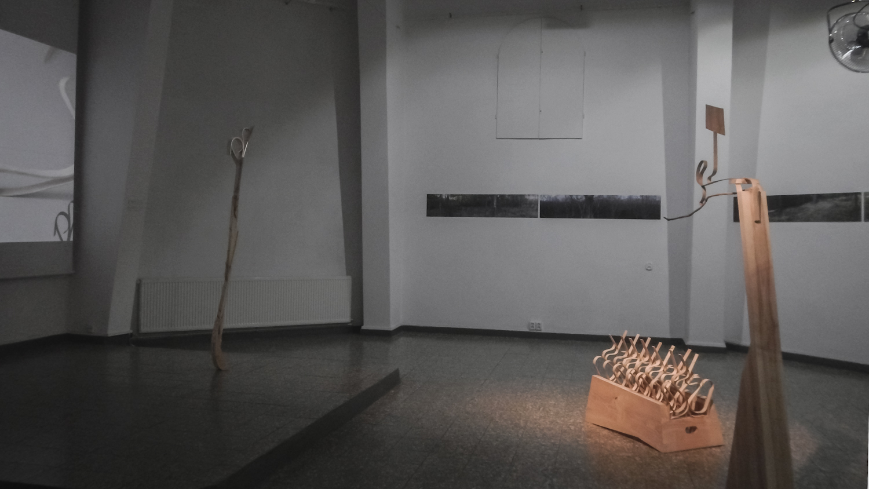 Ashtreekling, widok wystawy