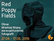 red_poppy_fields_SZUM
