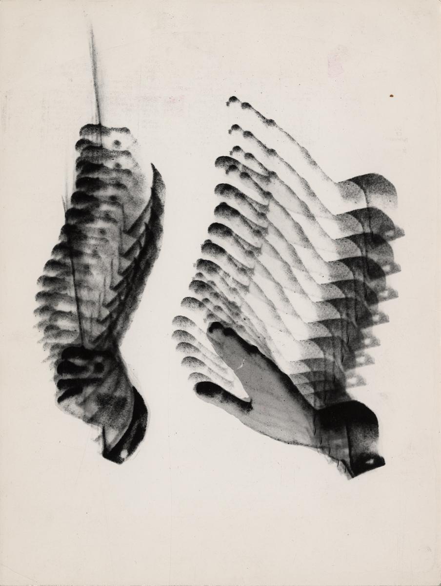 """studium do projektu plakatu """"Muzyka polska"""", 1963, dzięki uprzejmości Fundacji Archeologii Fotografii"""