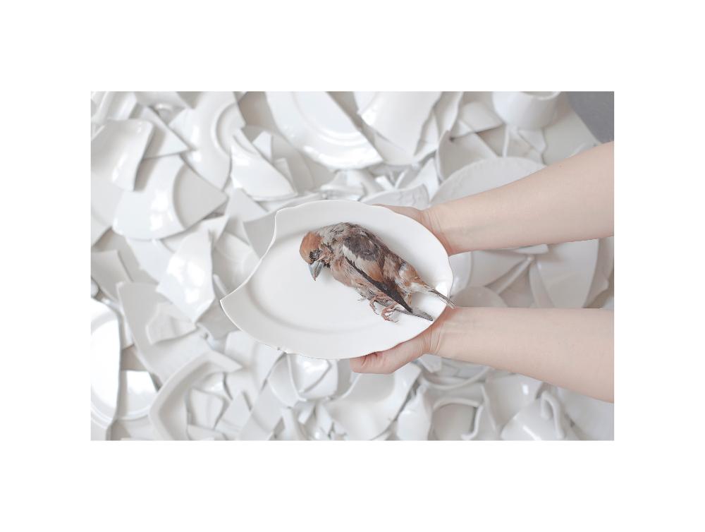 Alicja Patanowska, Myszy iludzie, fot.Alicja Kielan