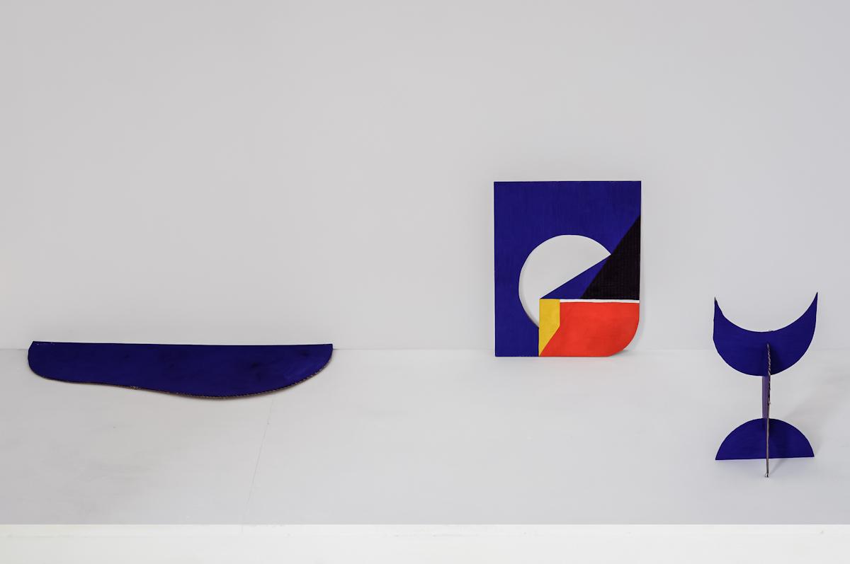 Kinga Nowak, Formy wyobraźni, widok wystawy