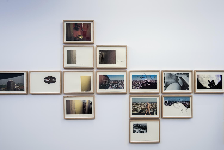 Joanna Rajkowska, Urodzona wBerlinie – List doRóży, 2011/2012 (fragment), kolekcja MWW
