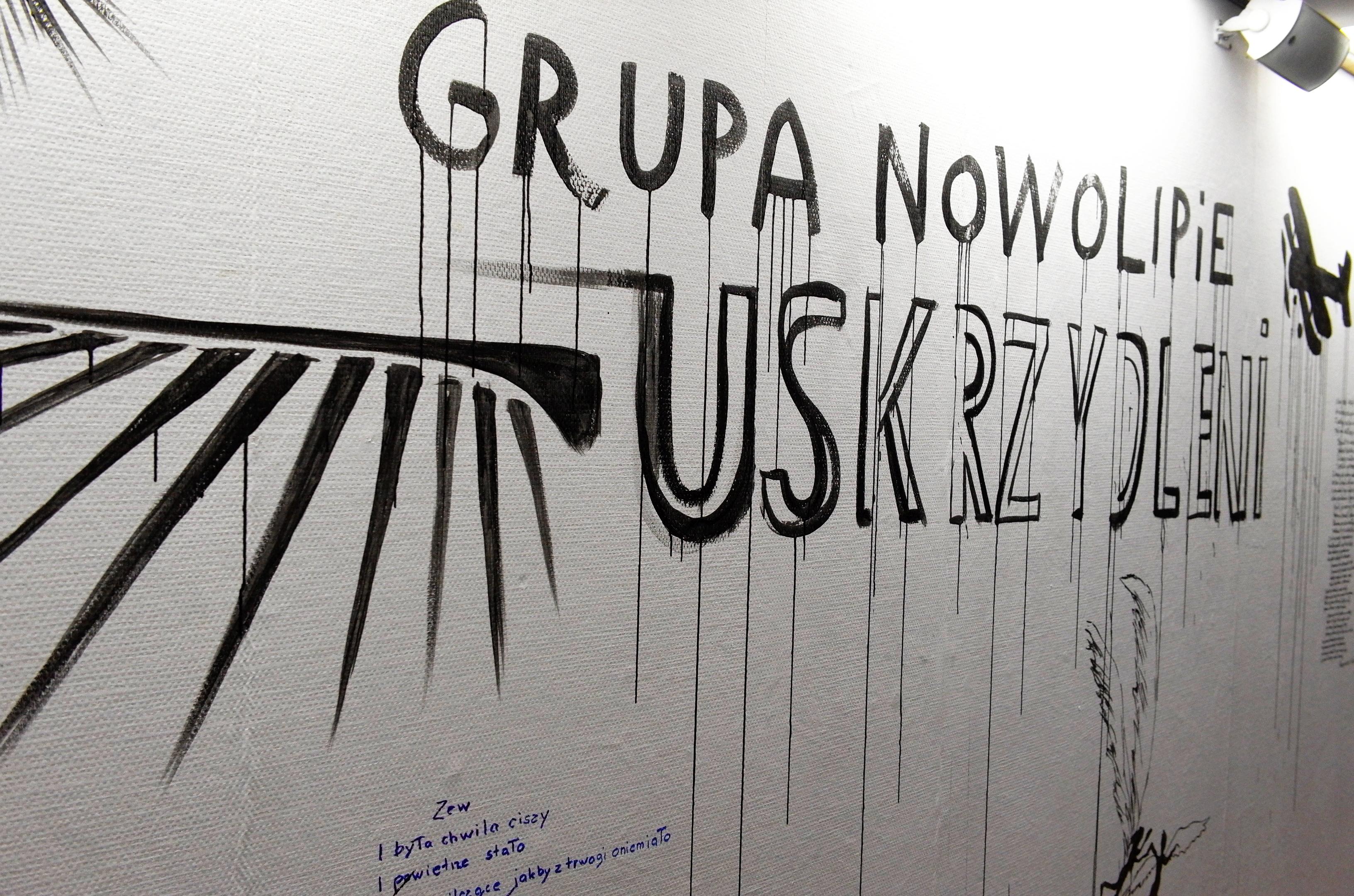 Uskrzydleni. Paweł Althamer iGrupa Nowolipie, widok wystawy
