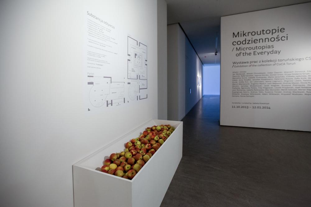 """Elżbieta Jabłońska, """"Substacja odżywcza"""", działanie wramach wystawy  """"Mikroutopie codzienności"""". Dzięki uprzejmości CSW wToruniu"""