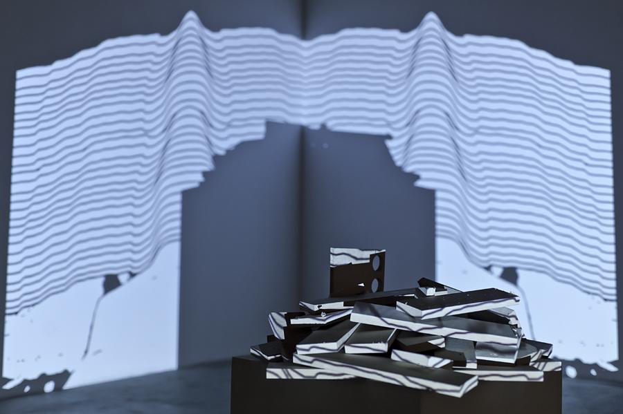 Alberto Lezaca, Stan symulacji - State of symulation, 2013
