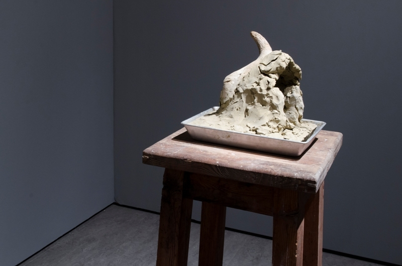 Izabela Tarasewicz, Jaskinia, 2011, glina, czaszka zwierzęca, stal.