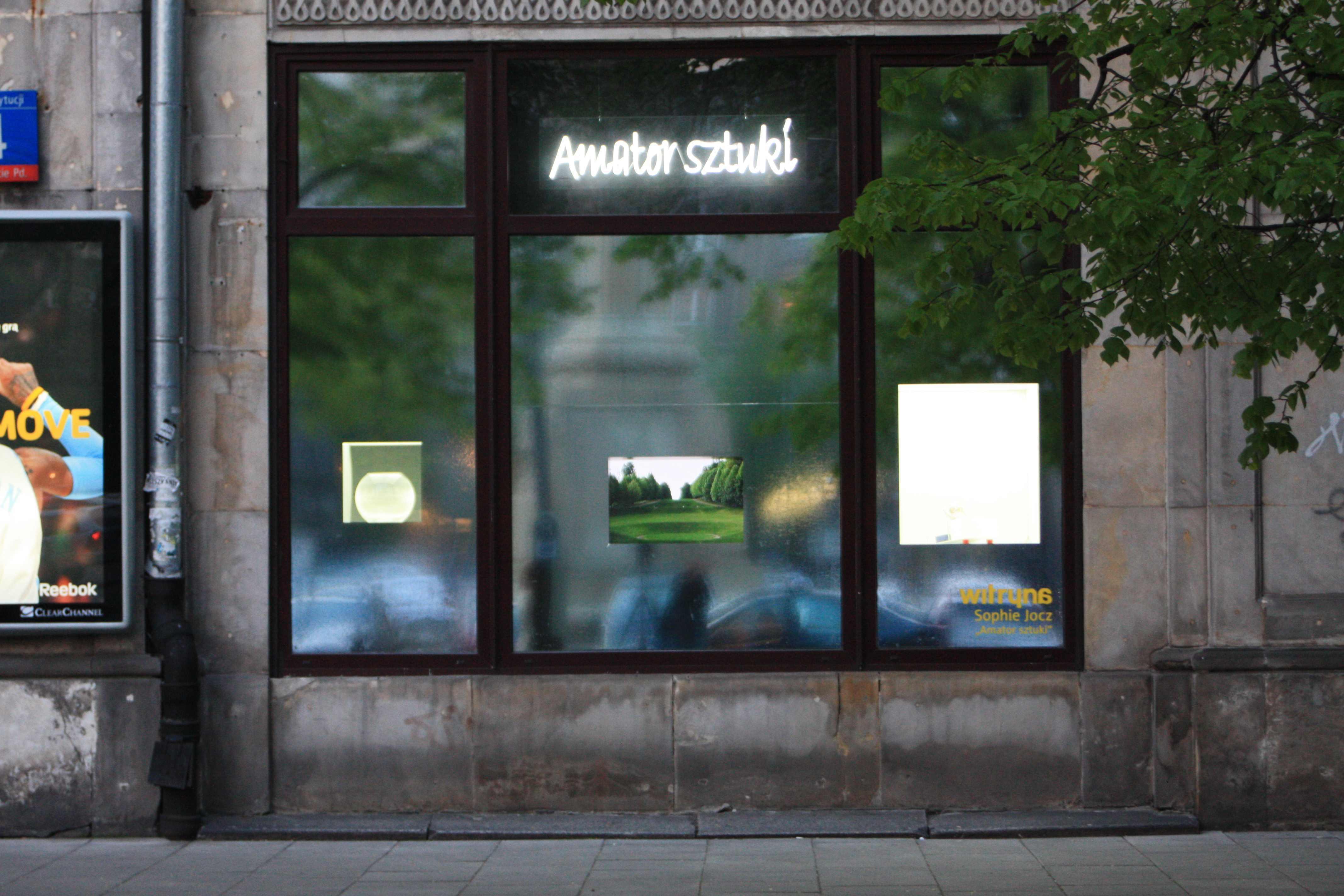 """Sophie Jocz """"Amator sztuki"""", 2008, fot.dzięki uprzejmości Witryny"""