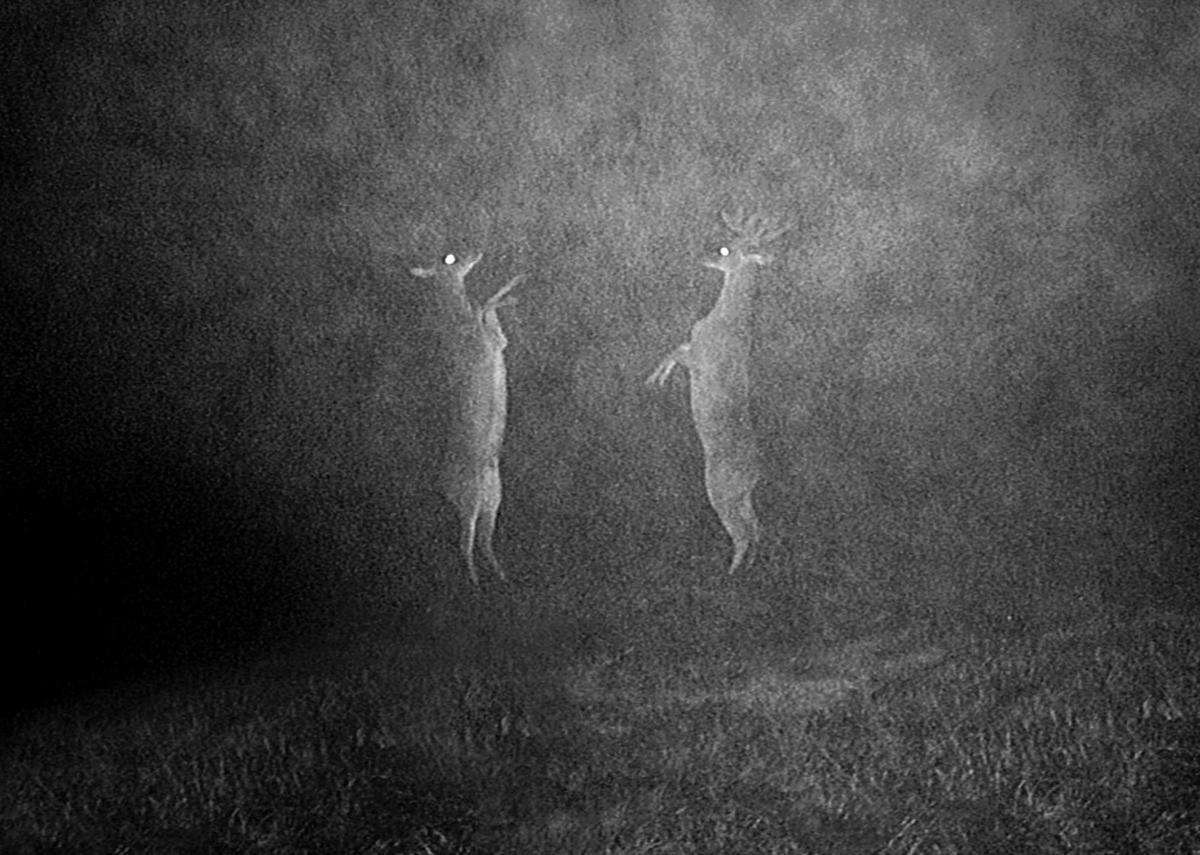 """Medium sztuki ognia. """"Piroerotomachia"""" wramach 8. Biennale Fotografii"""
