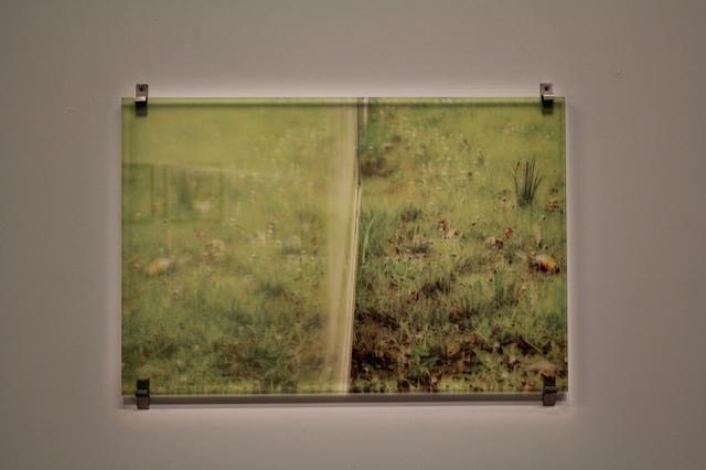 """Maria Laskowska """"Brzask"""", 2014 druk fotografii naszkle"""