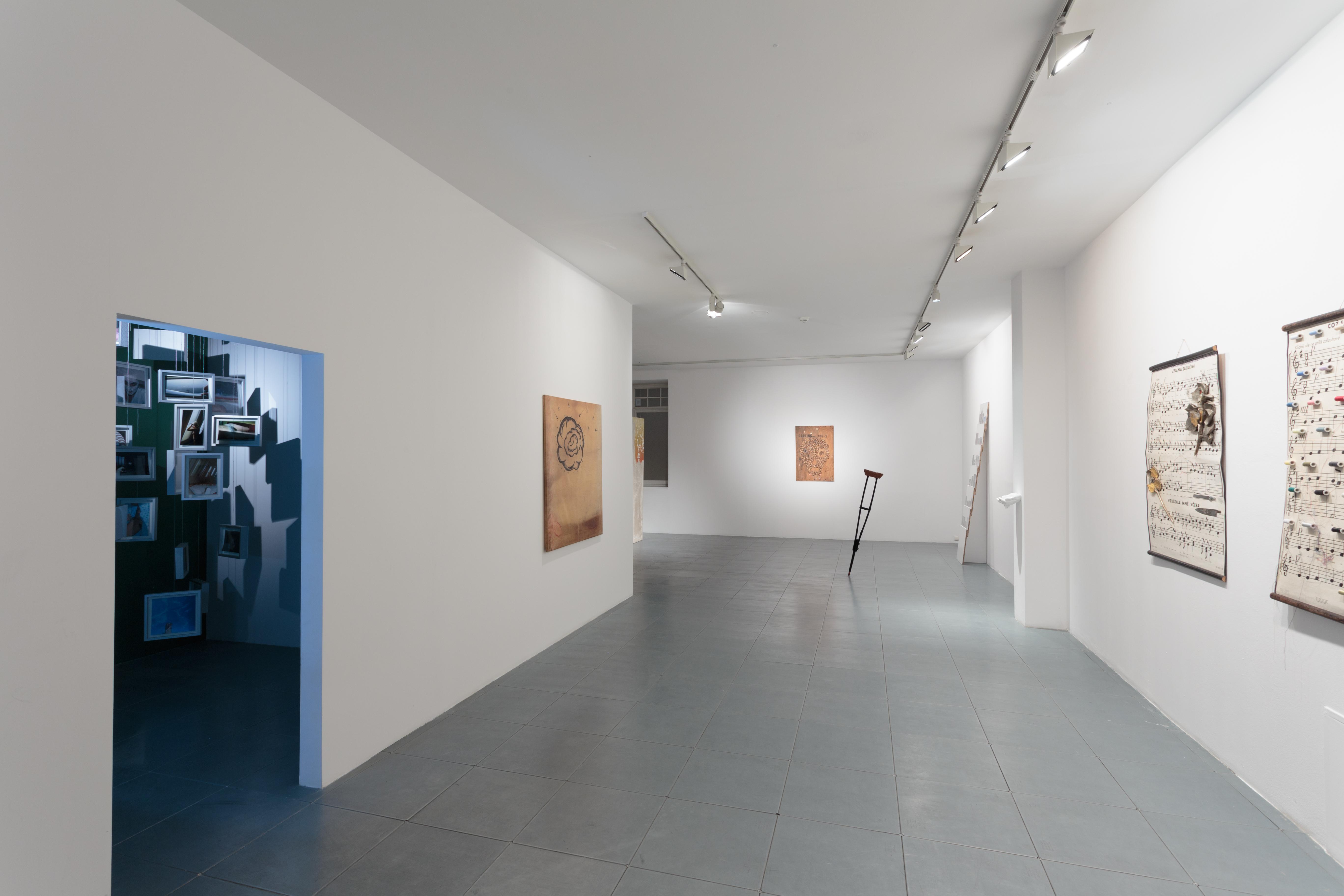 """Jiri David, """"...bezczasowy czas - faktycznie nic się niedzieje!, widok ogólny wystawy, dzięki uprzejmości Le Guern"""
