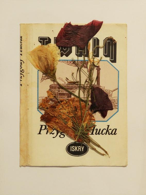 Bez tytułu, 2014  seria kolaży, okładki książek, suszone rośliny, 20x15 cm