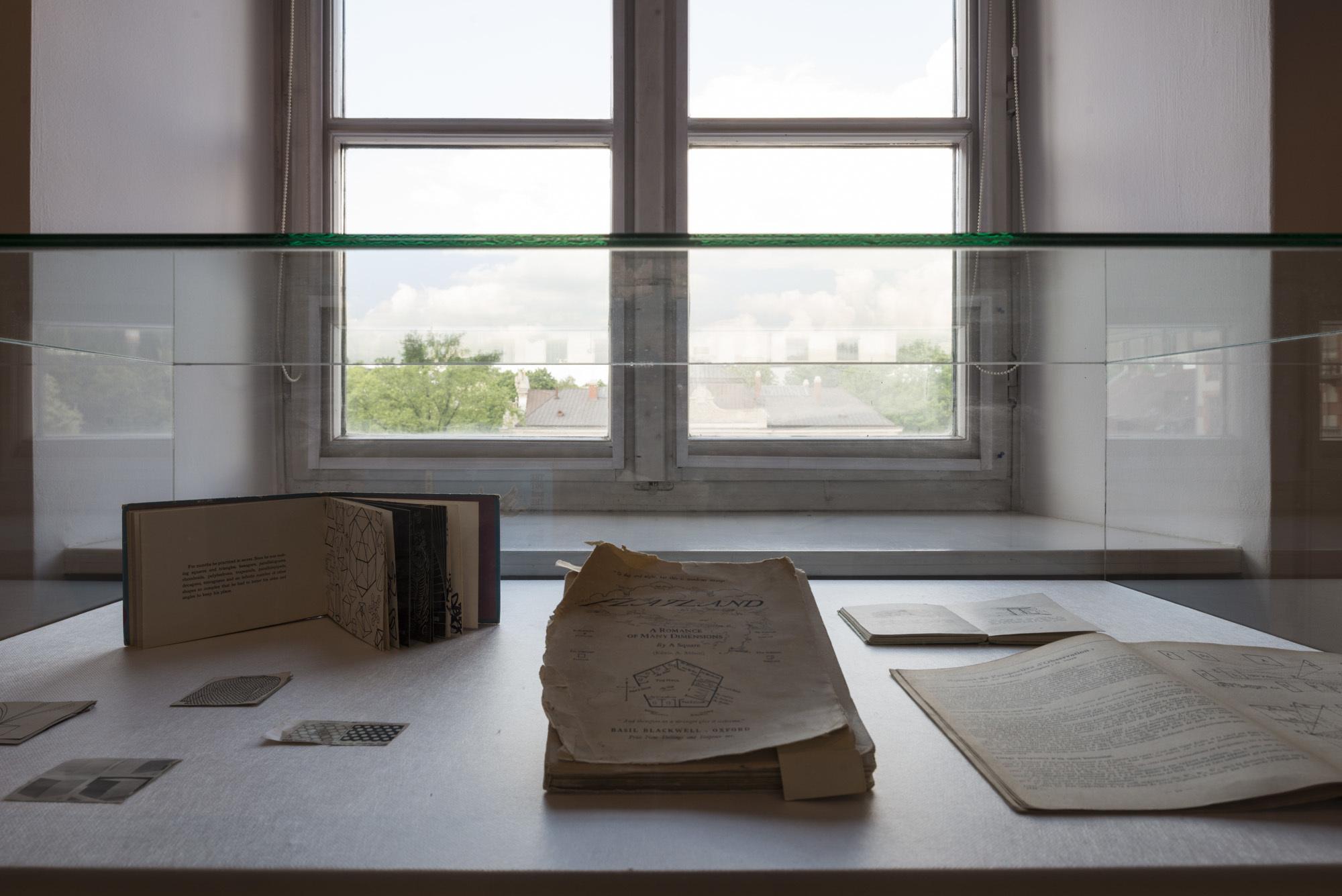"""Clare Strand, """"Lektury dodatkowe"""", widok ekspozycji"""