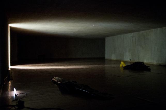 "Anna Baugmart, ""Piwnica Fritzla"", 2014"