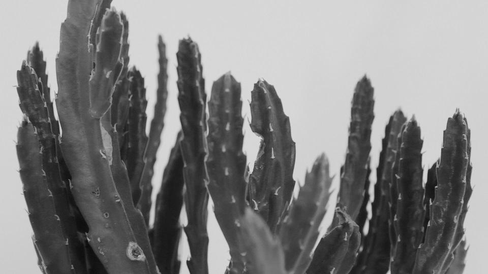 """Piotr Blajerski, """"Uncertainty"""", wideo HDV, 8'00, 2014"""