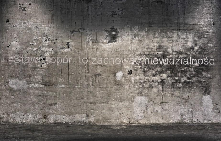 Kader Attia, Stawić opór, znaczy zachować niewidzialność, biała kreda, 2011