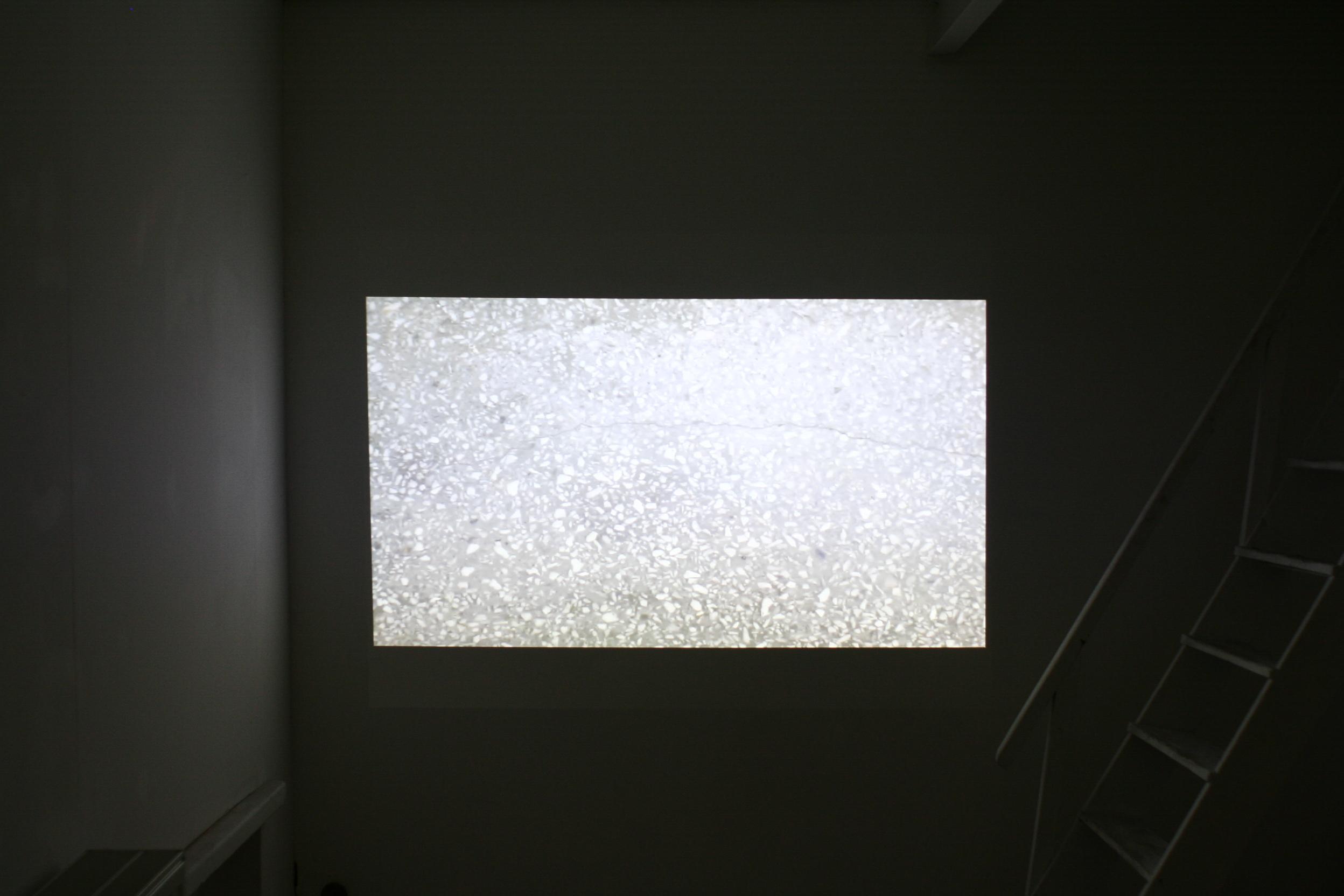 """Paweł Stasiewicz, """"No Signal"""", 2014, wideo"""