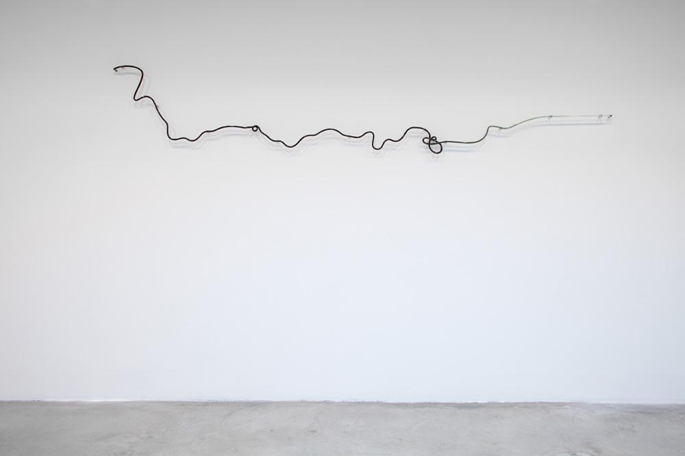 Agnieszka Kurant,The End of Signature, 2014