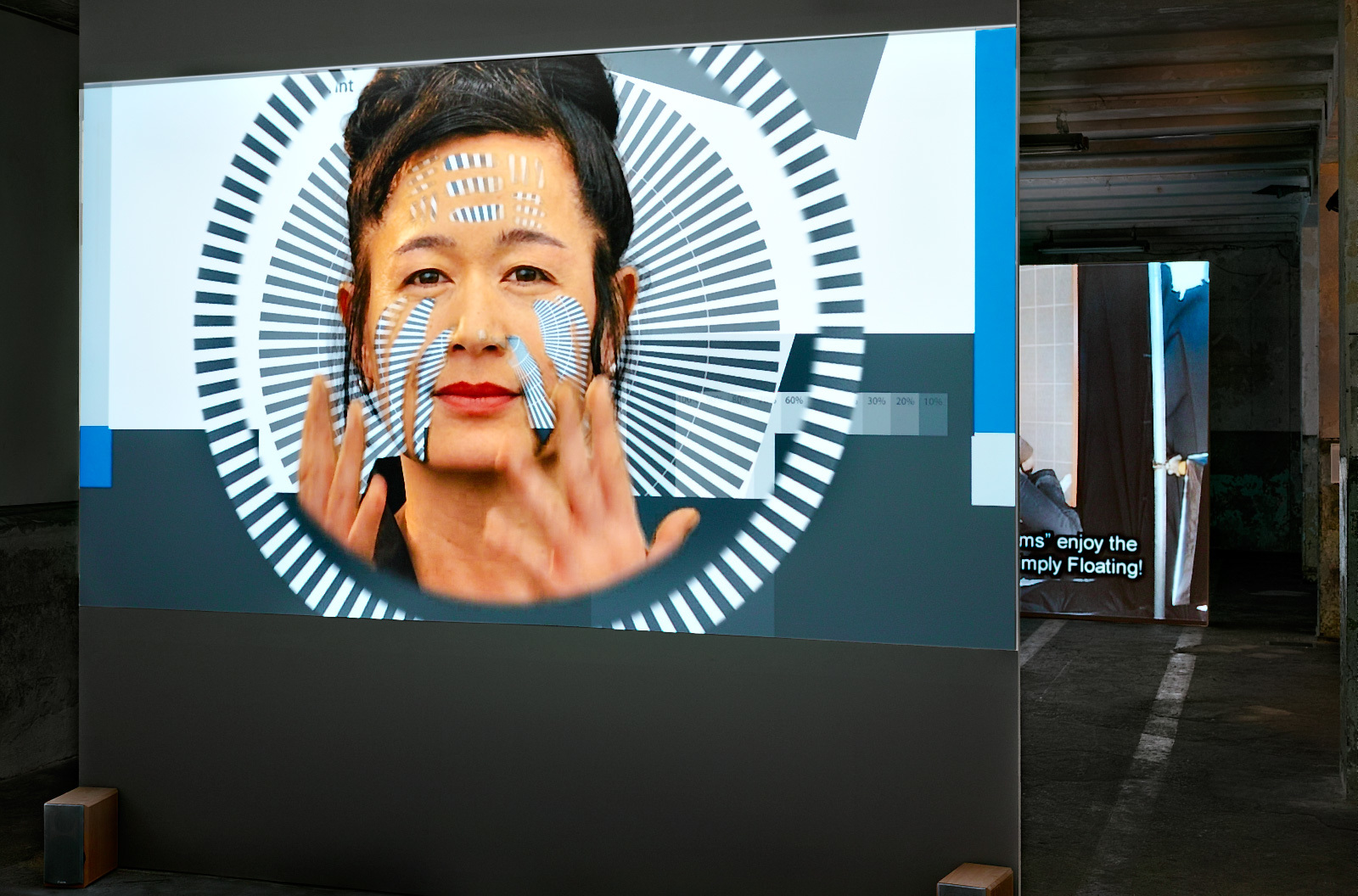 Hito Steyerl, How Not ToBe Seen. AFucking Didactic Educational.MOV File, 2013