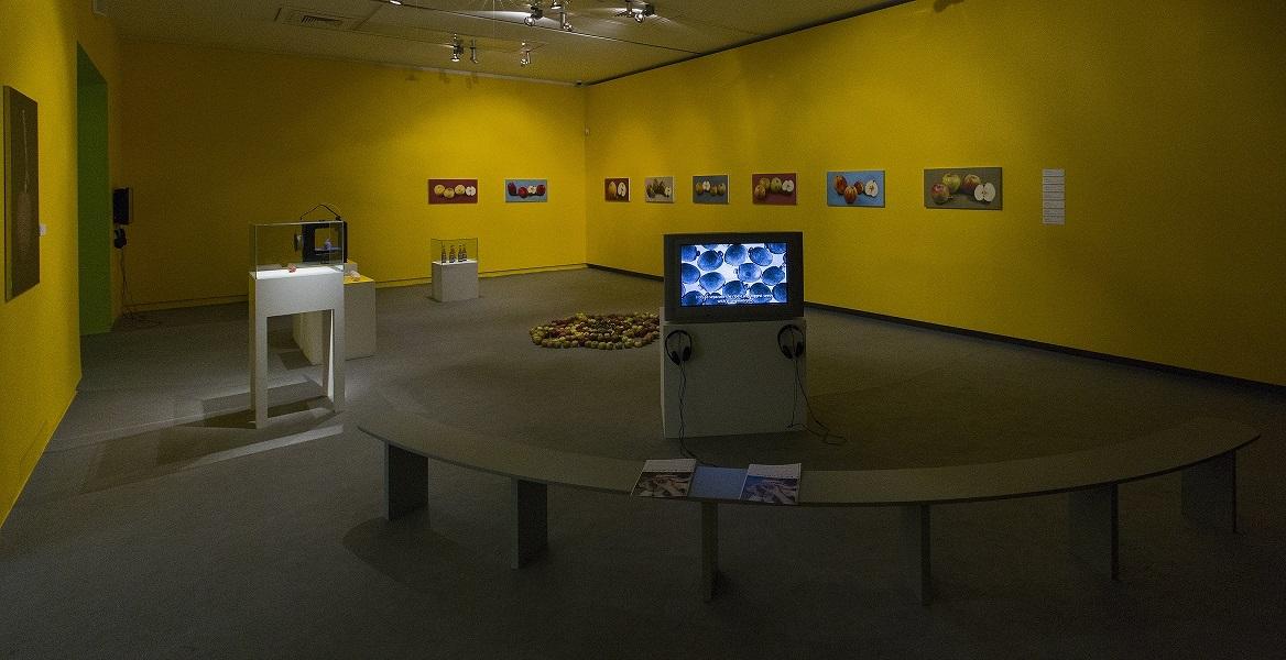 Jabłko. Introdukcja., widok wystawy
