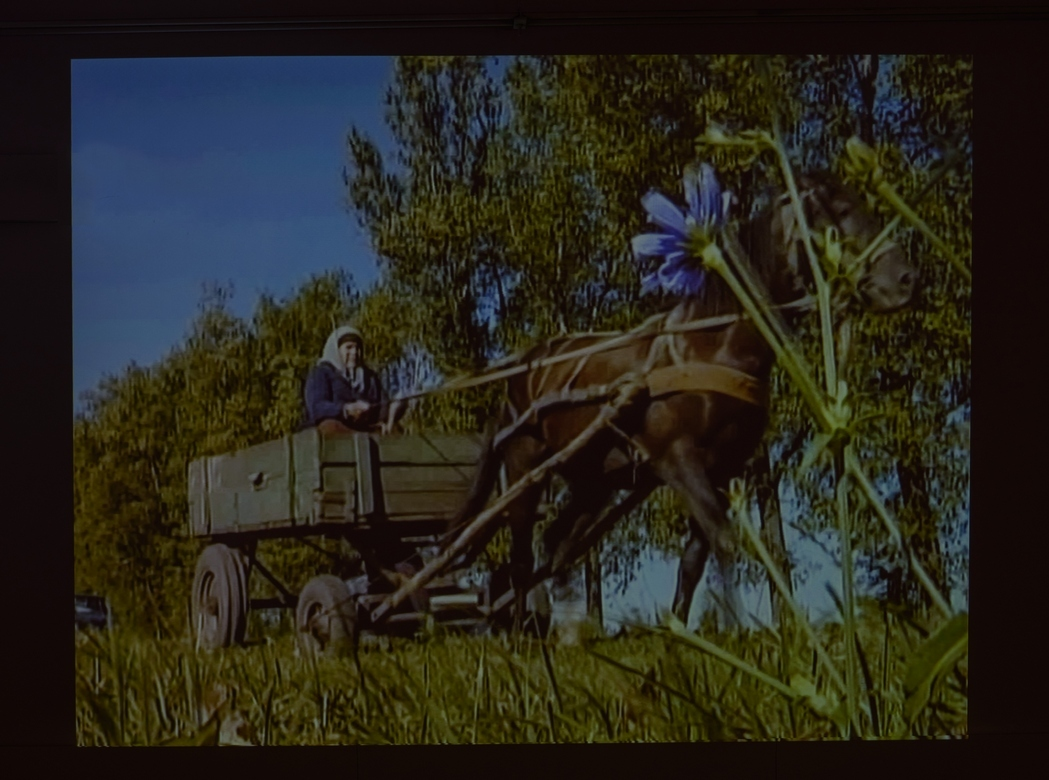 R.E.P., Ukraińska ziemia, wideo, 2010