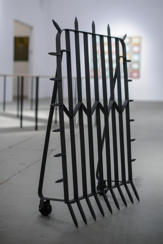 Lada Nakonechna, Tarcza osobista, 2011