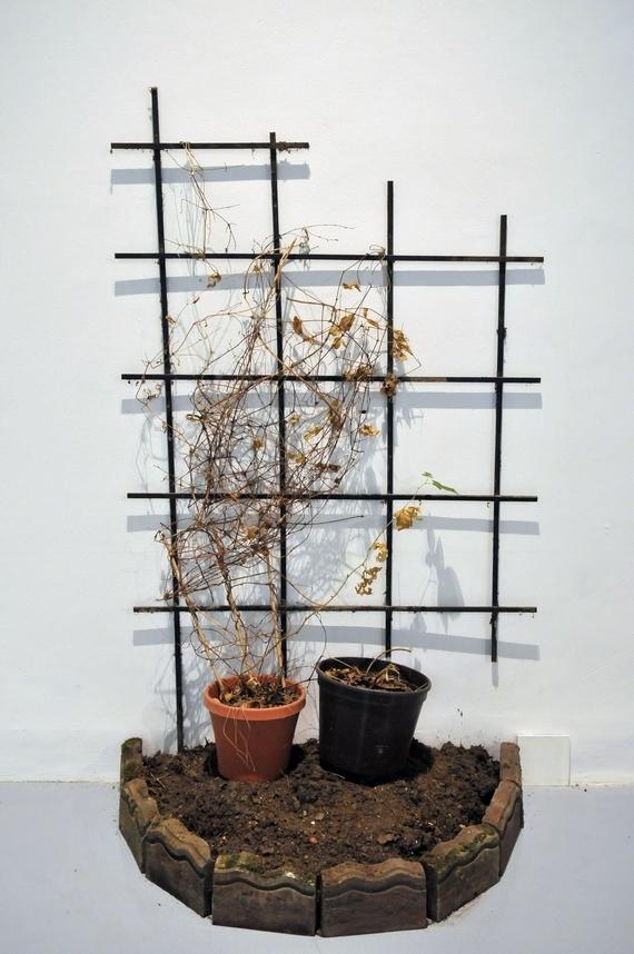 Wystawa Gregor Schneider. Unsubscribe, Zachęta