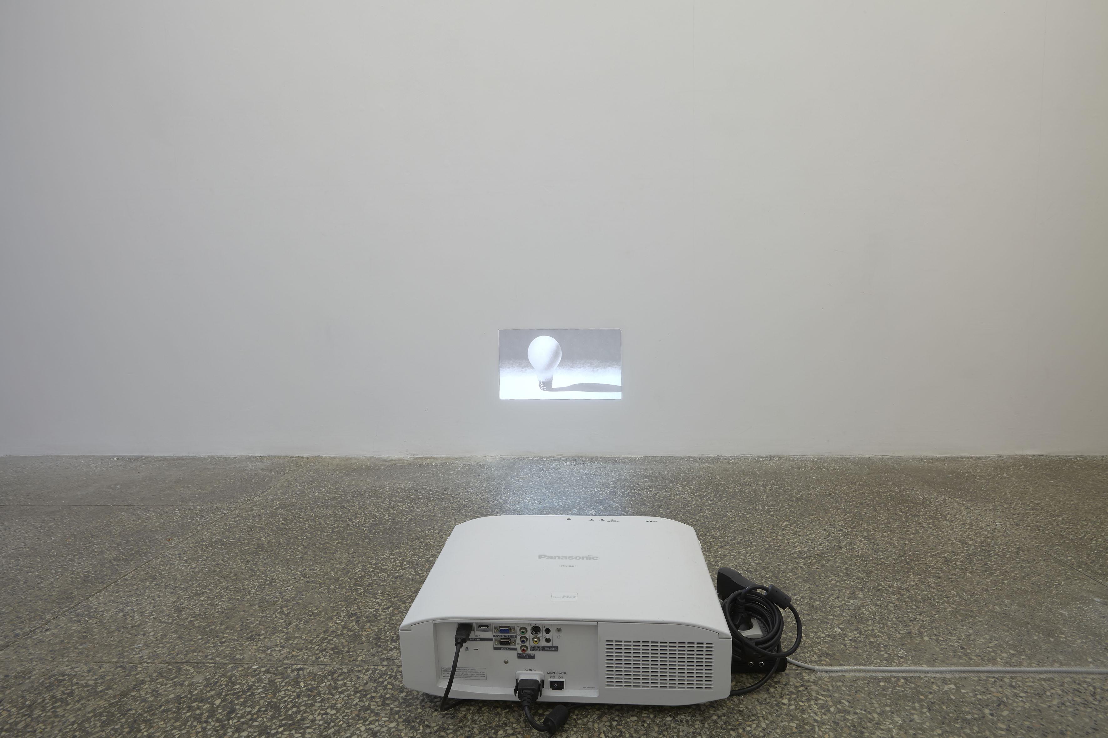 Agnieszka Polska, Pierwszy eksperyment zesztucznym światłem, wideo HD, 2013