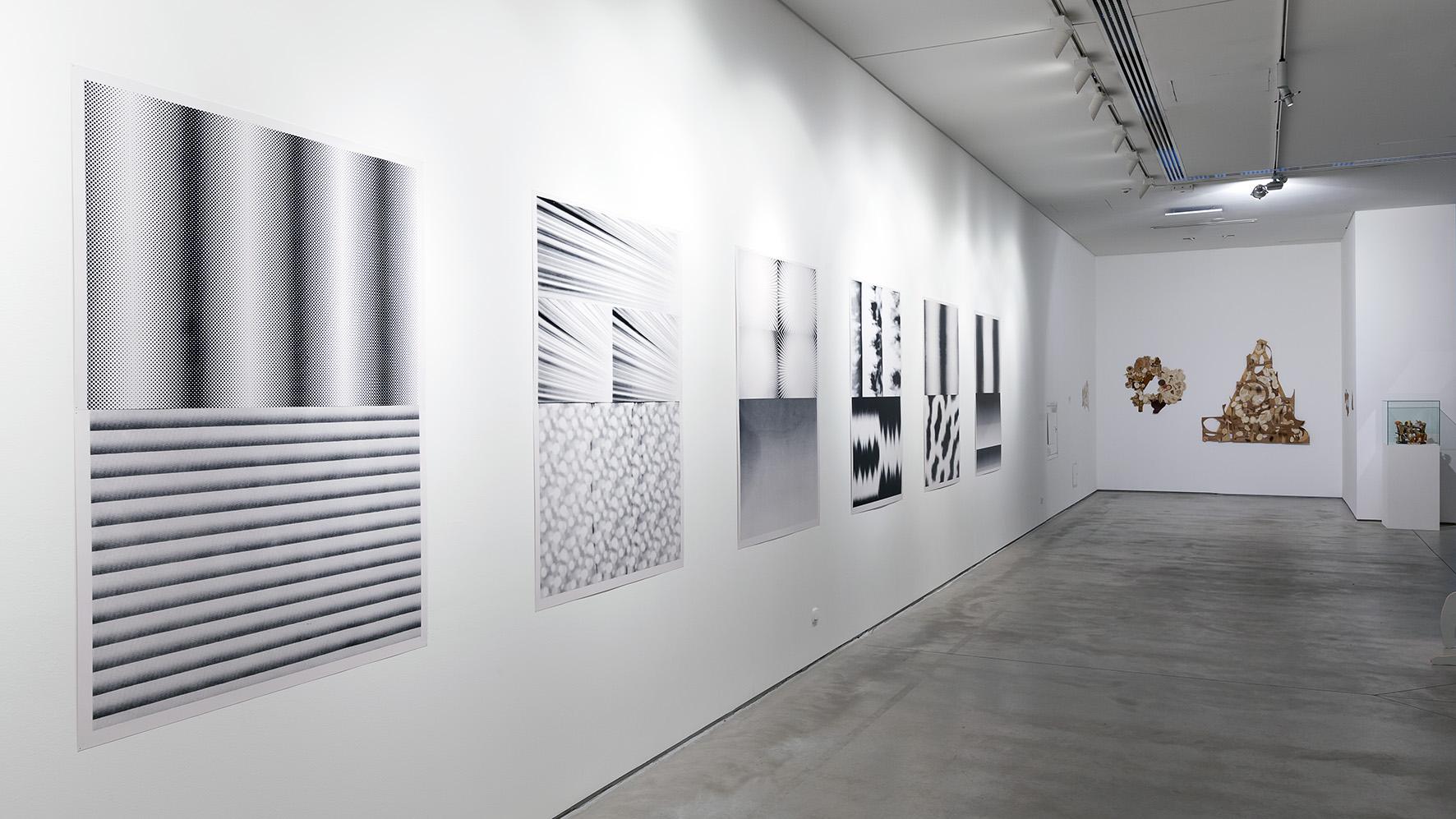 Teppei Kaneuji, Marzenie ugotowane natwardo, 2014, sitodruk, 11 części