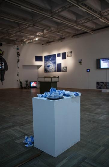 Kombucha, widok wystawy