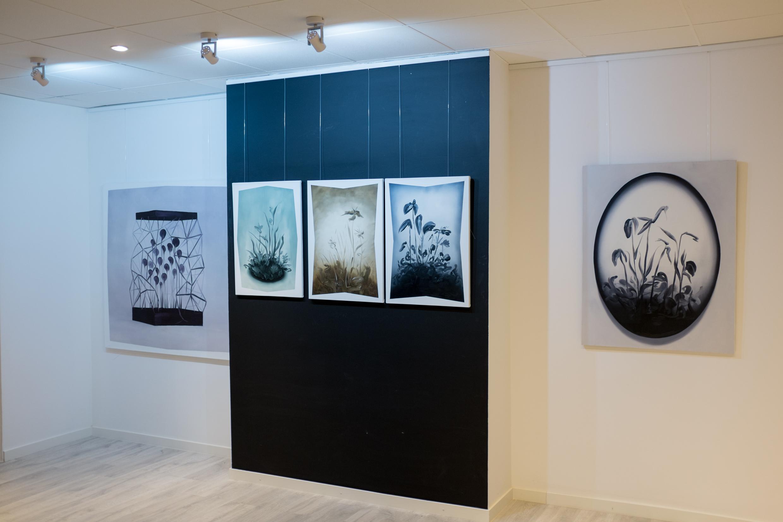 Łukasz Patelczyk, Niebko, widok wystawy
