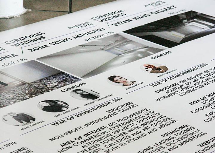 Curatorial Meetings / Spotkania kuratorskie  Cieszyn 2015