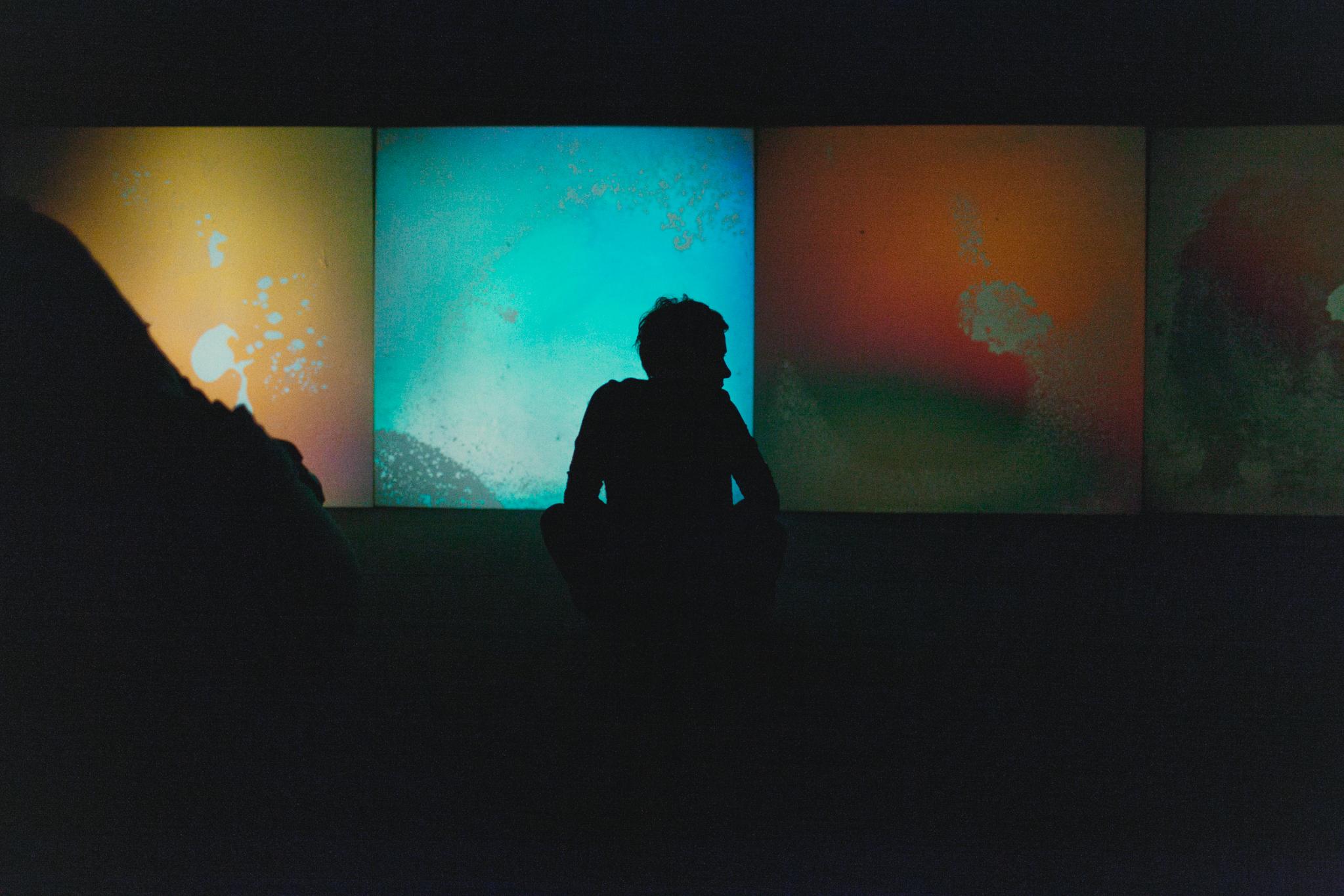 Gustaw Metzger, widok wystawy