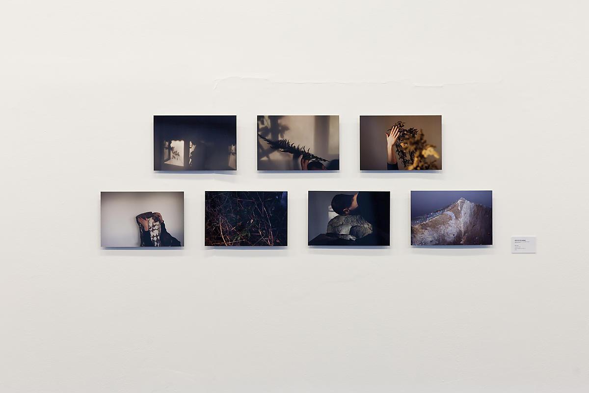 Nagroda Główna: Krzysztof Maniak, Beztytułu, fotografia cyfrowa, siedem fotografii 40x26,7 cm, 2015, fot.Bartosz Stawiarski