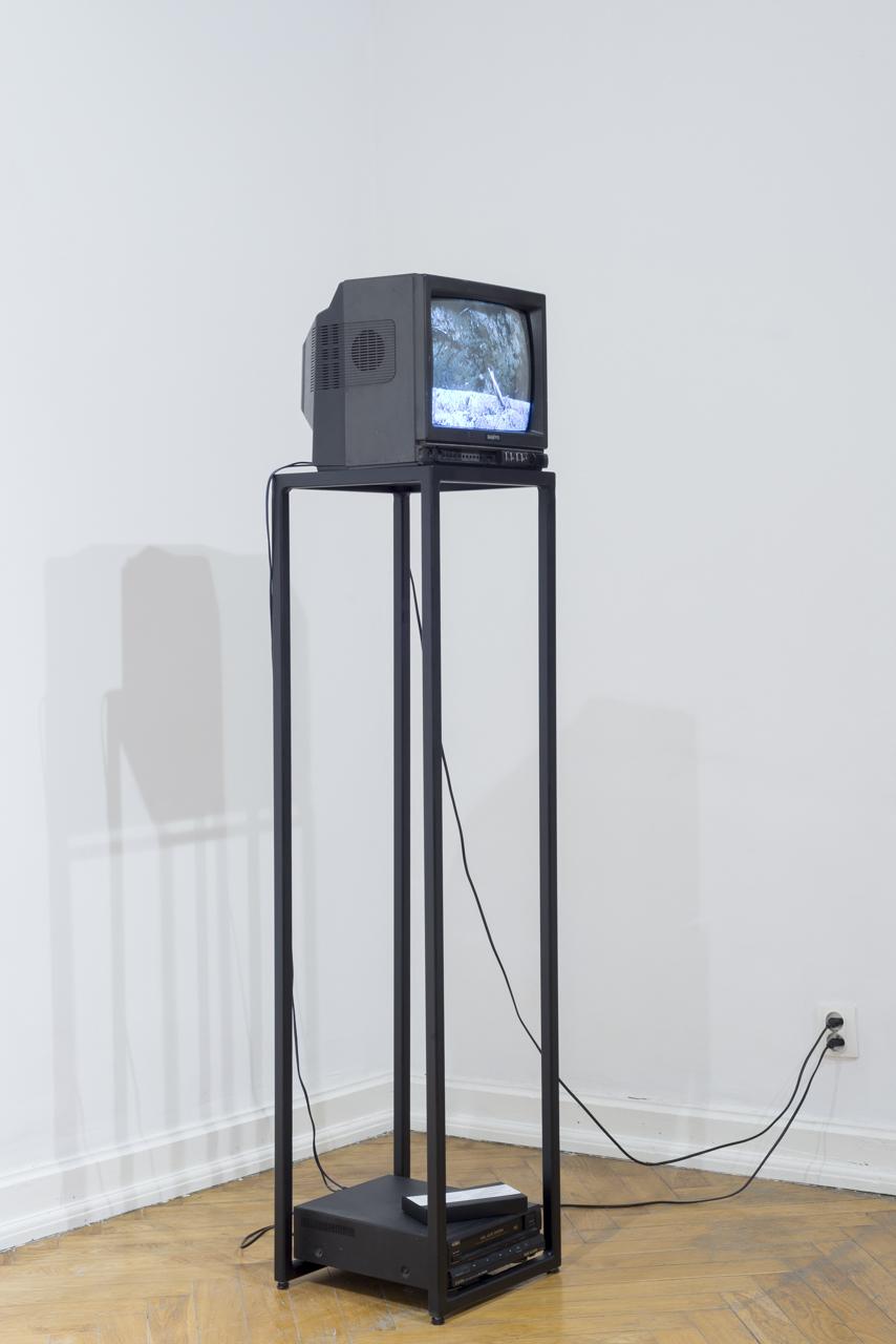 Natalia Wiśniewska,  Kanibalizm oka, 2014, wideo, 8'34''