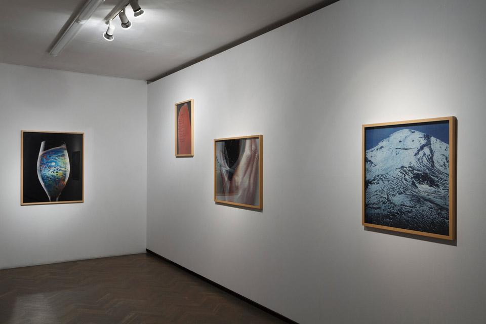 W poszukiwaniu gadającej góry, widok wystawy