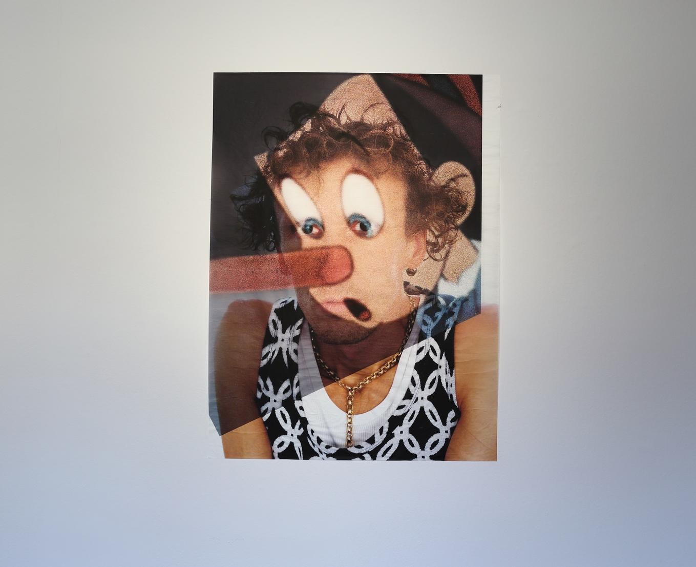Marina Faust, Florian as Pinocchio zcyklu Fusions, 2014