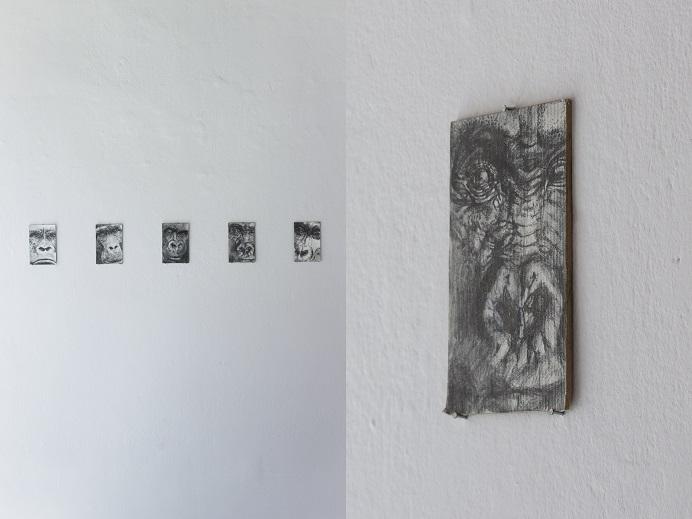 Wystawa Bóg Małpa, widok ekspozycji