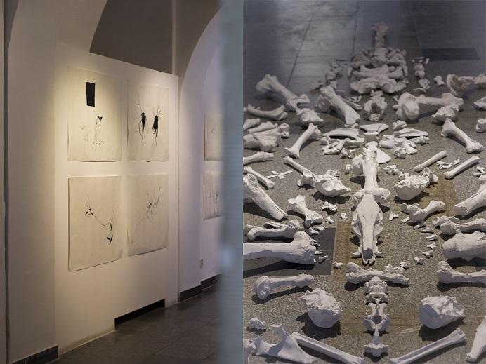 Honorata Martin, Straszne tusz napapierze, 2015; Kości, instalacja 2015