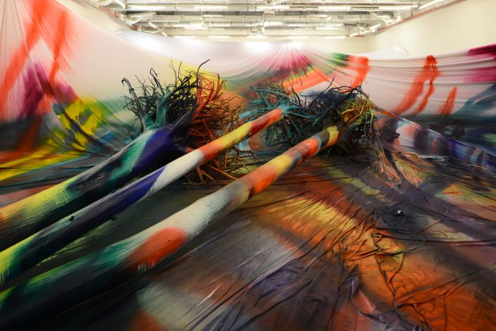 Katharina Grosse, widok wystawy Yes No Why Later, Garaż, Moskwa