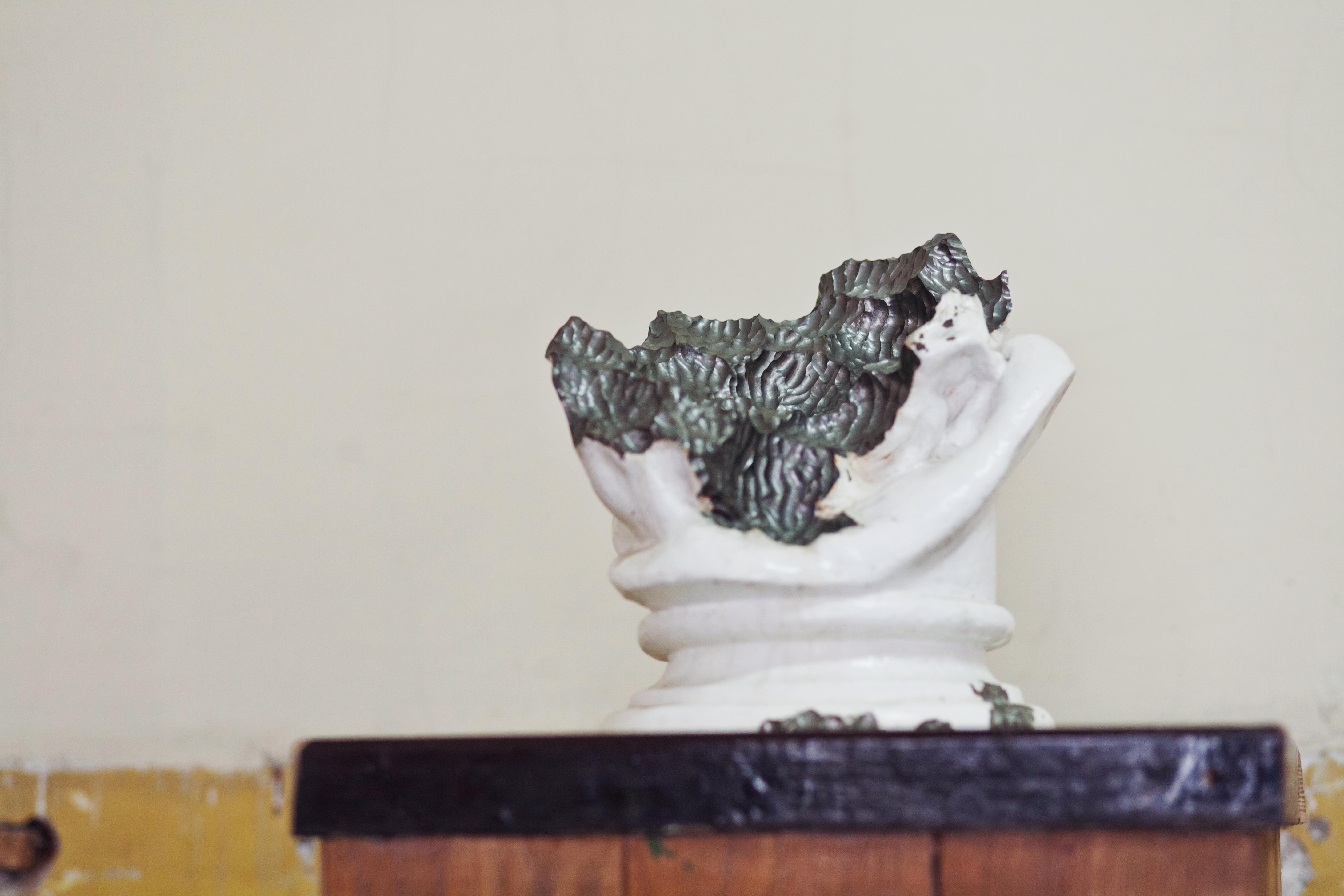 Olaf Brzeski, Rzeźba zjedzona przezślimaka