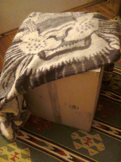 Tajemnicze pudło podbiurkowe kocem obleczone, obiekt archiwalny