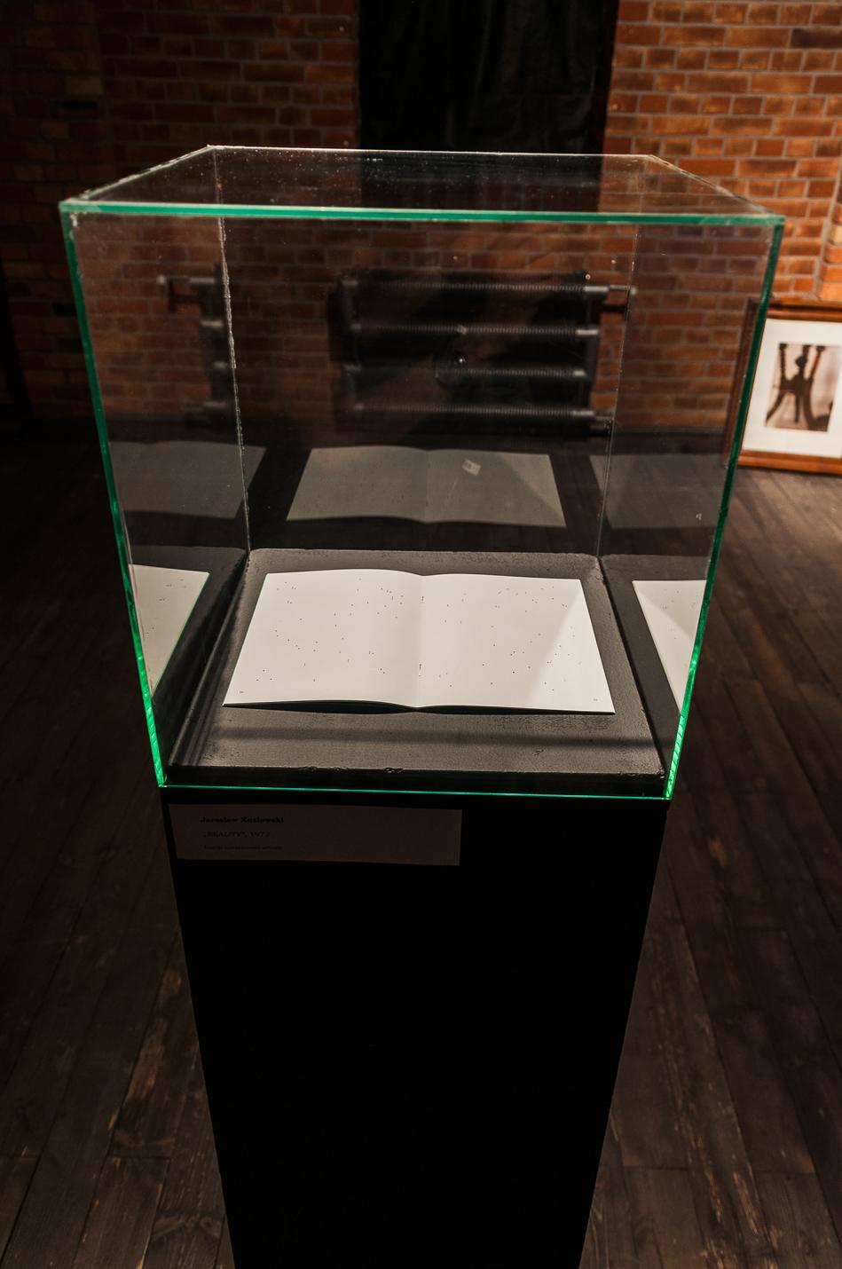 #naukaczytania, widok wystawy