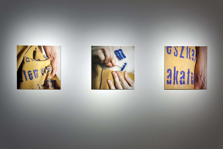 Iwona Zając, Cud ciężkiej pracy, 2012-2013